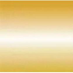 Порог одноуровневый 25 мм 02л Анод Золото